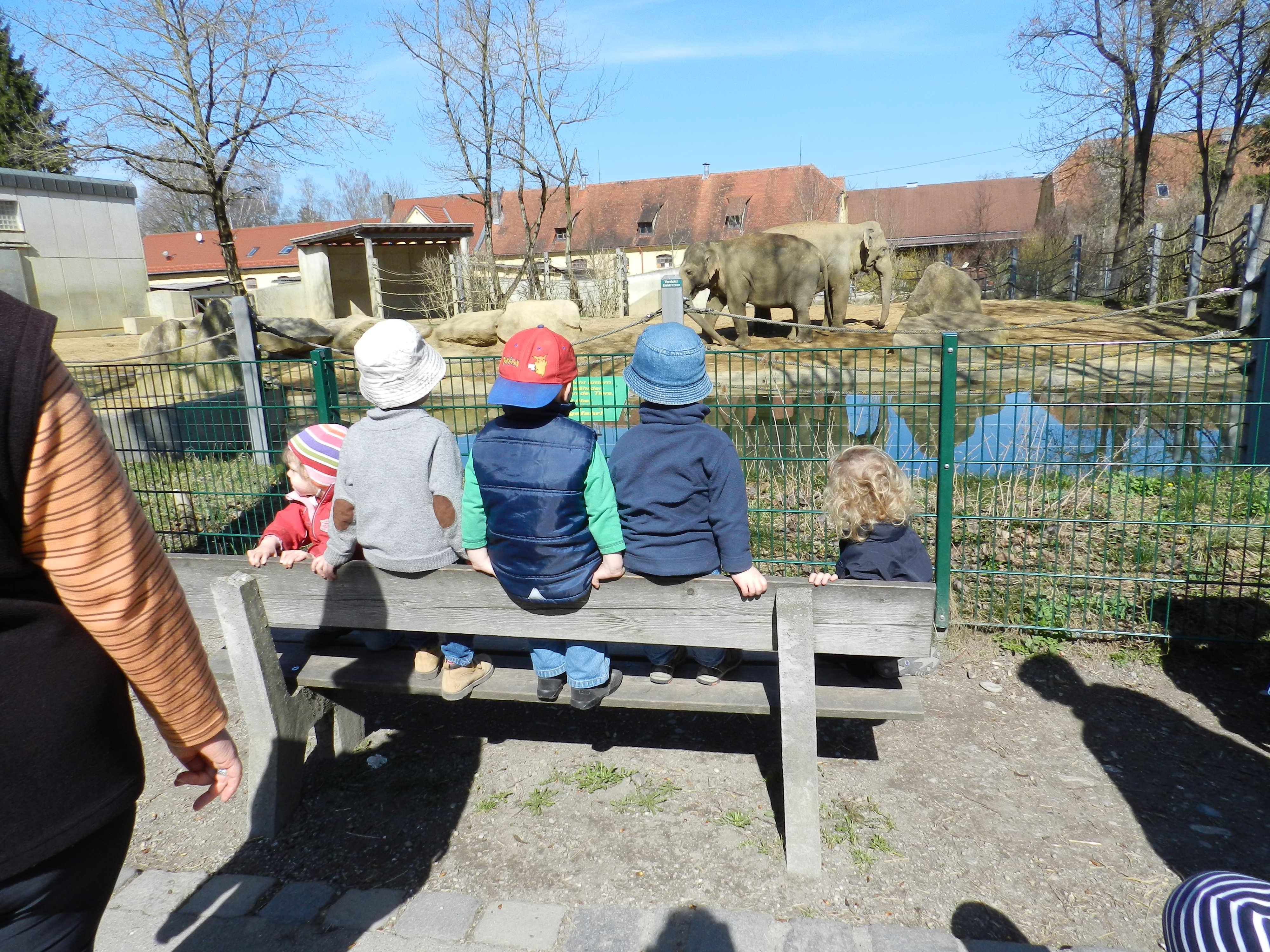 Im_Zoo